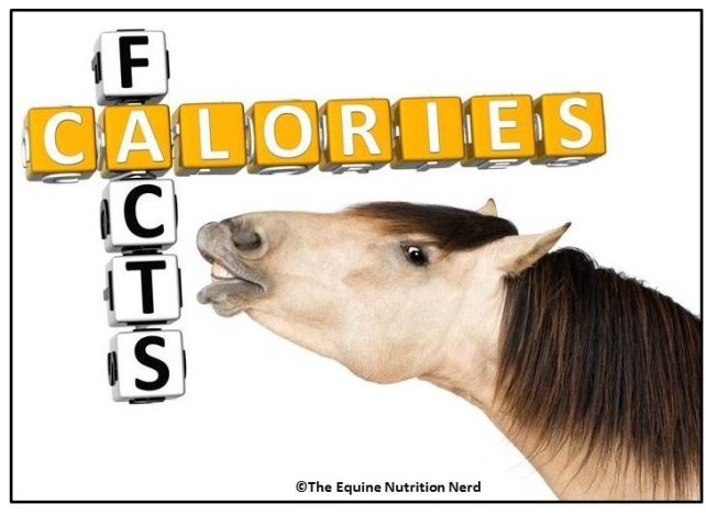 Happy Horse Healthy Planet.com._Caolories Cover