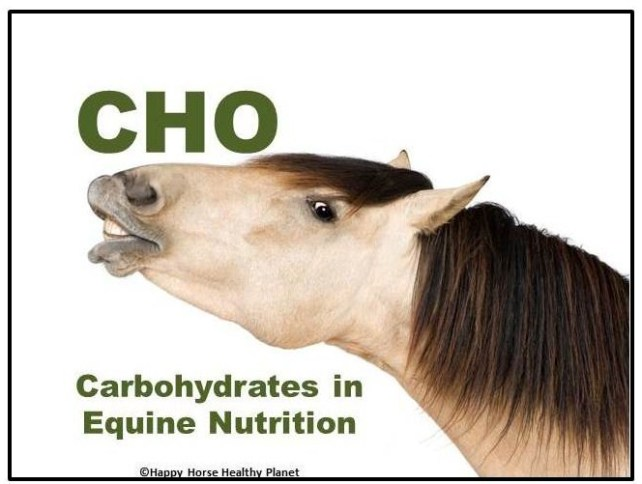 HappyHorseHealthyPlanet.Carbohydrates_Cover