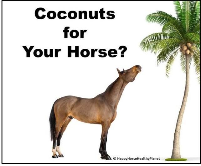HappyHorseHealthyPlanet.Coconuts_Cover