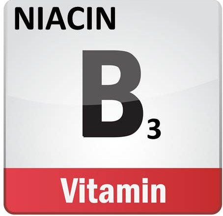 This is the primary benefit of niacin (B3) Happyhorsehealthyplanet_b3_niacin