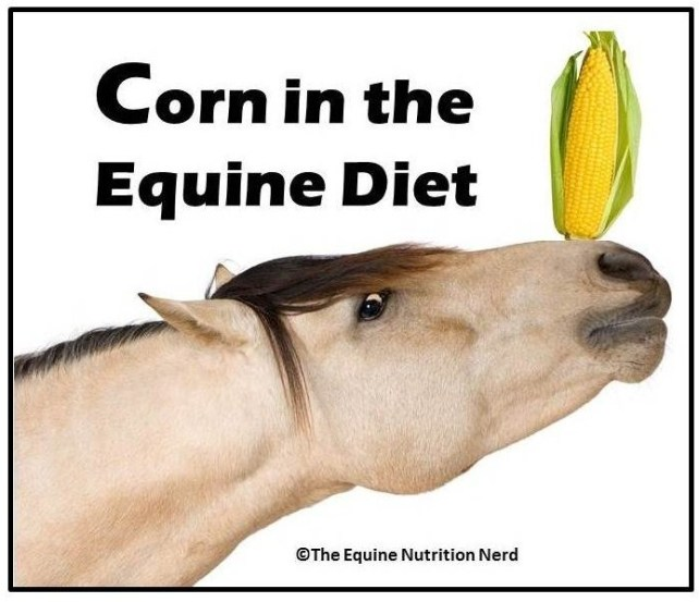 Happy Horse Healthy Planet_Corn