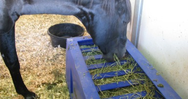 HappyHorseHealthyPlanet_The Natural Feeder