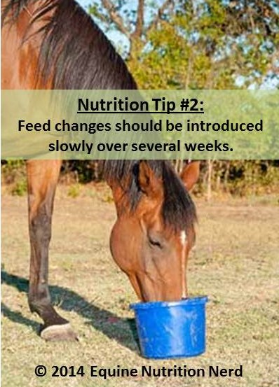 Nutrition Tip #2