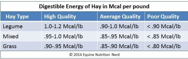 Equine Nutrition Nerd_DE of Hay