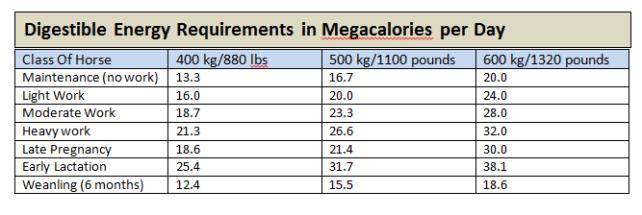 EquineNutritionNerd_Digestible Energy Requiirements