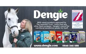 Dengie2