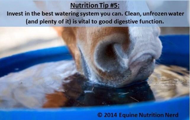 NUTRITION TIP #5