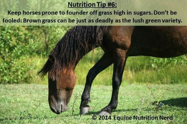 ENN_Nerd Nutrition Tip 6