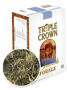 product-safe-starch-forage1