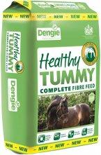 SetWidth145-Healthy-Tummy-large