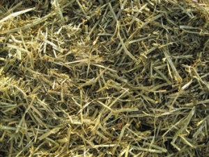 Triple-Crown-Nutrition-Alfalfa-Forage-Image