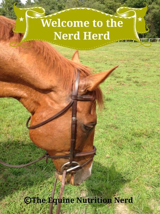 ENN-Nerd Herd 2015