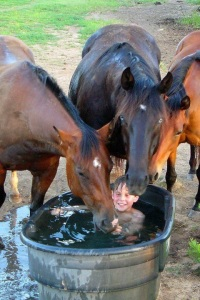 HappyHorseHealthyPlanet.com.Watertank