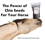 chia seeds for your horse
