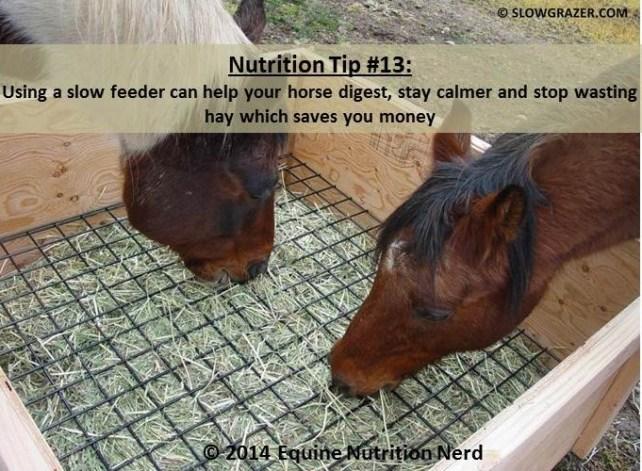 ENN_Nerd Nutrition Tip 13